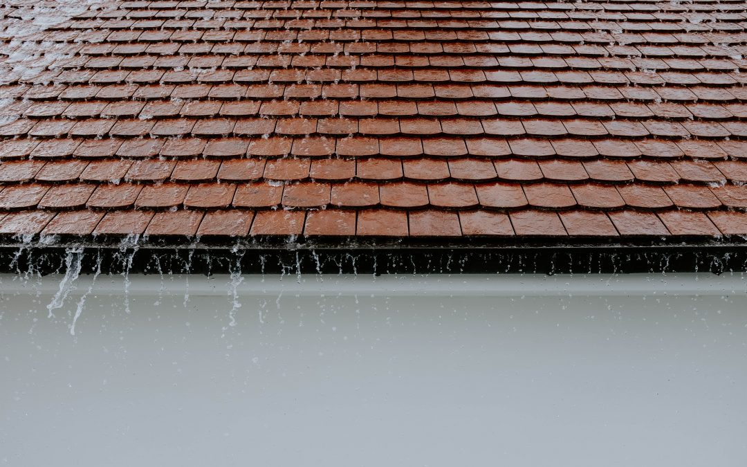 Sustainable Roofing Types for Your New Roof